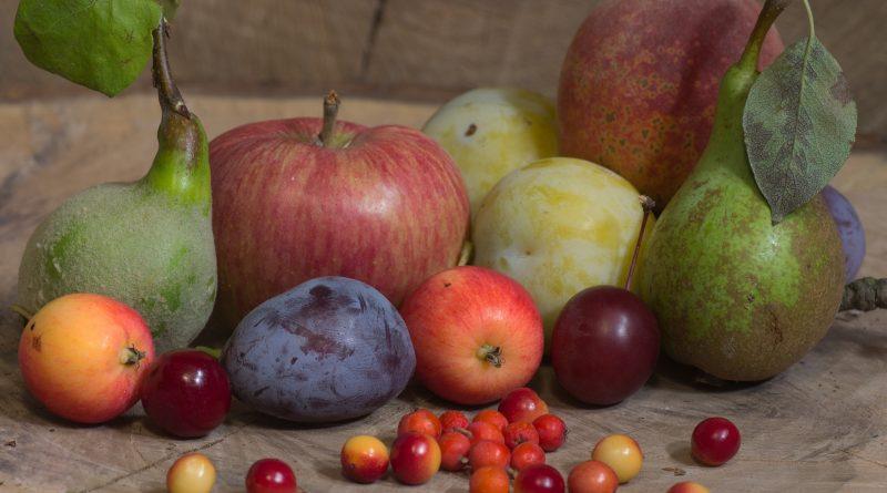 Учителят Петър Дънов: 19 храни за цяр
