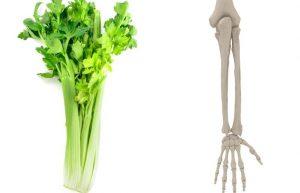 Целина – кости