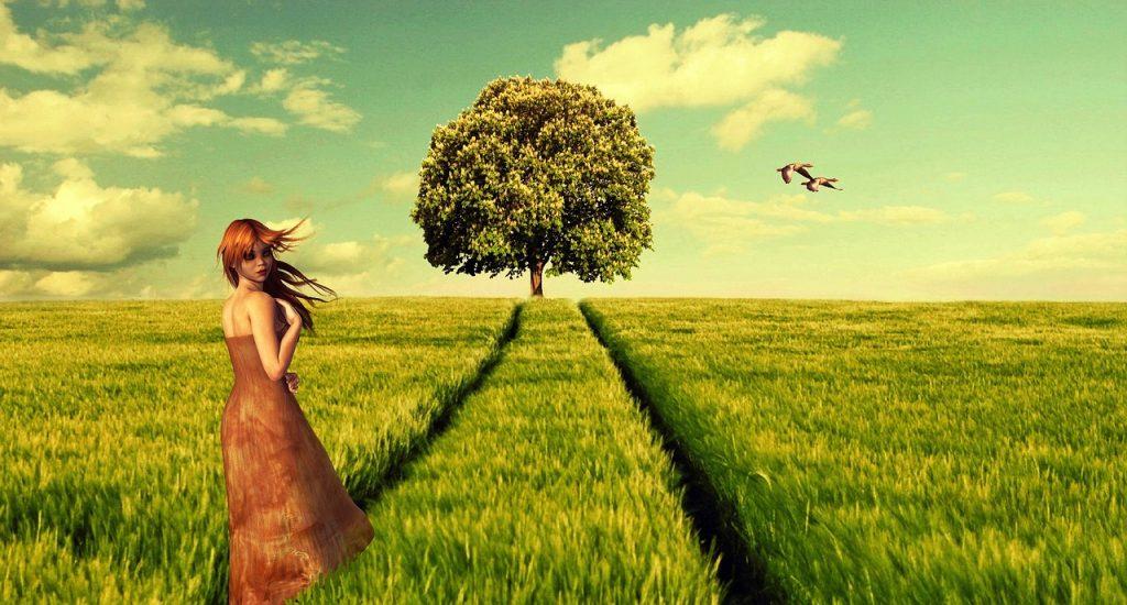 дърво на мъдростта - символ на четвърти лунен ден