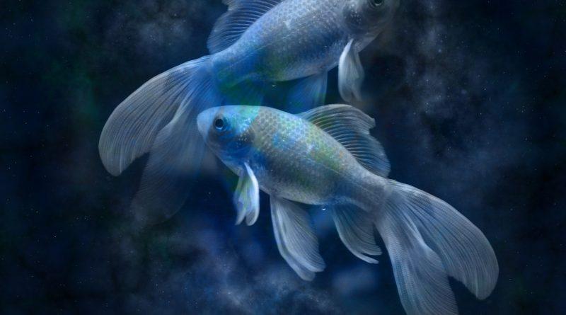 Хороскоп на зодия Риби