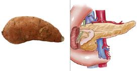 Сладък картоф – Панкреас